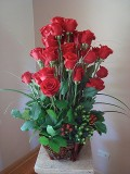 Red Roses Distance Image